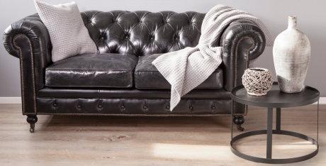 sofa viajando con chester